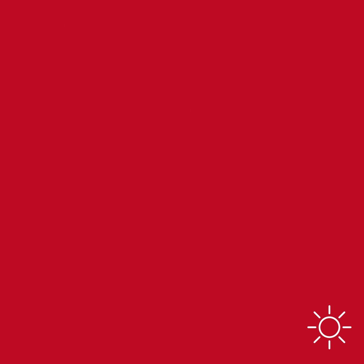 EVOLUTION LINE (5ml) - PIGMENT RED POSETTIA EVOLUTIONLINE AMIEA (5 ml)