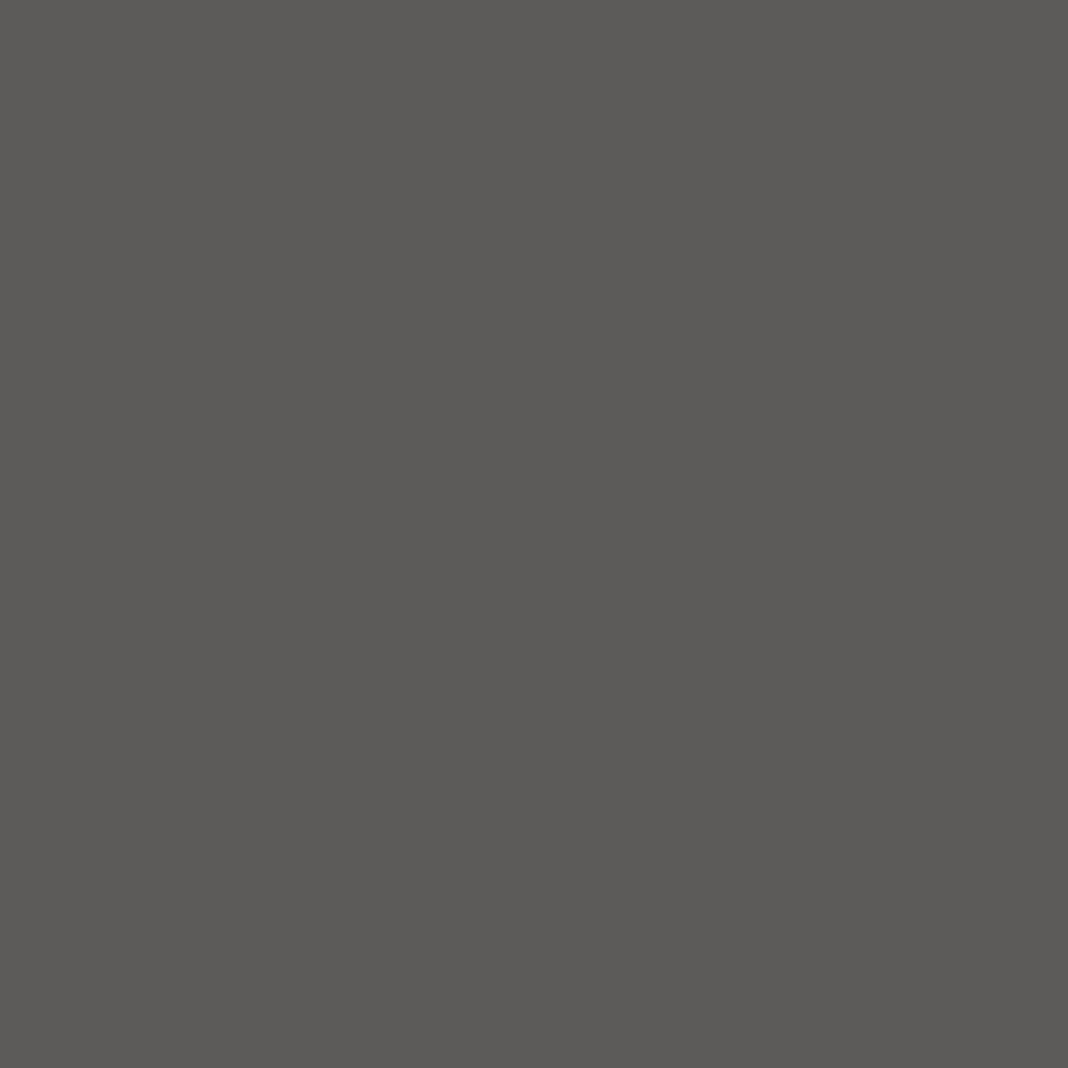 Organicline (10 ml) - PIGMENTS AMIEA ORGANICLINE GRAPHITE, Flacon 10 ml